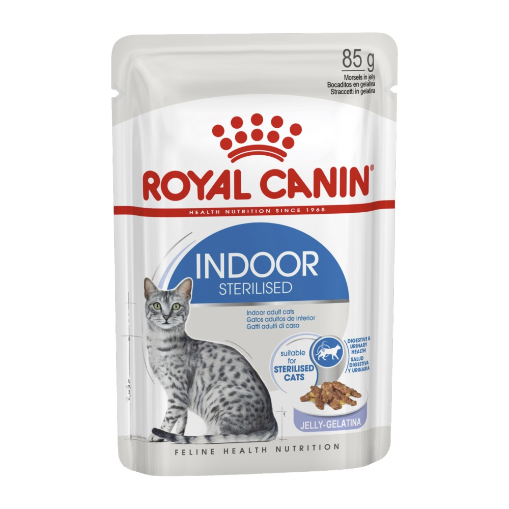 Royal Canin Adult Indoor in Jelly