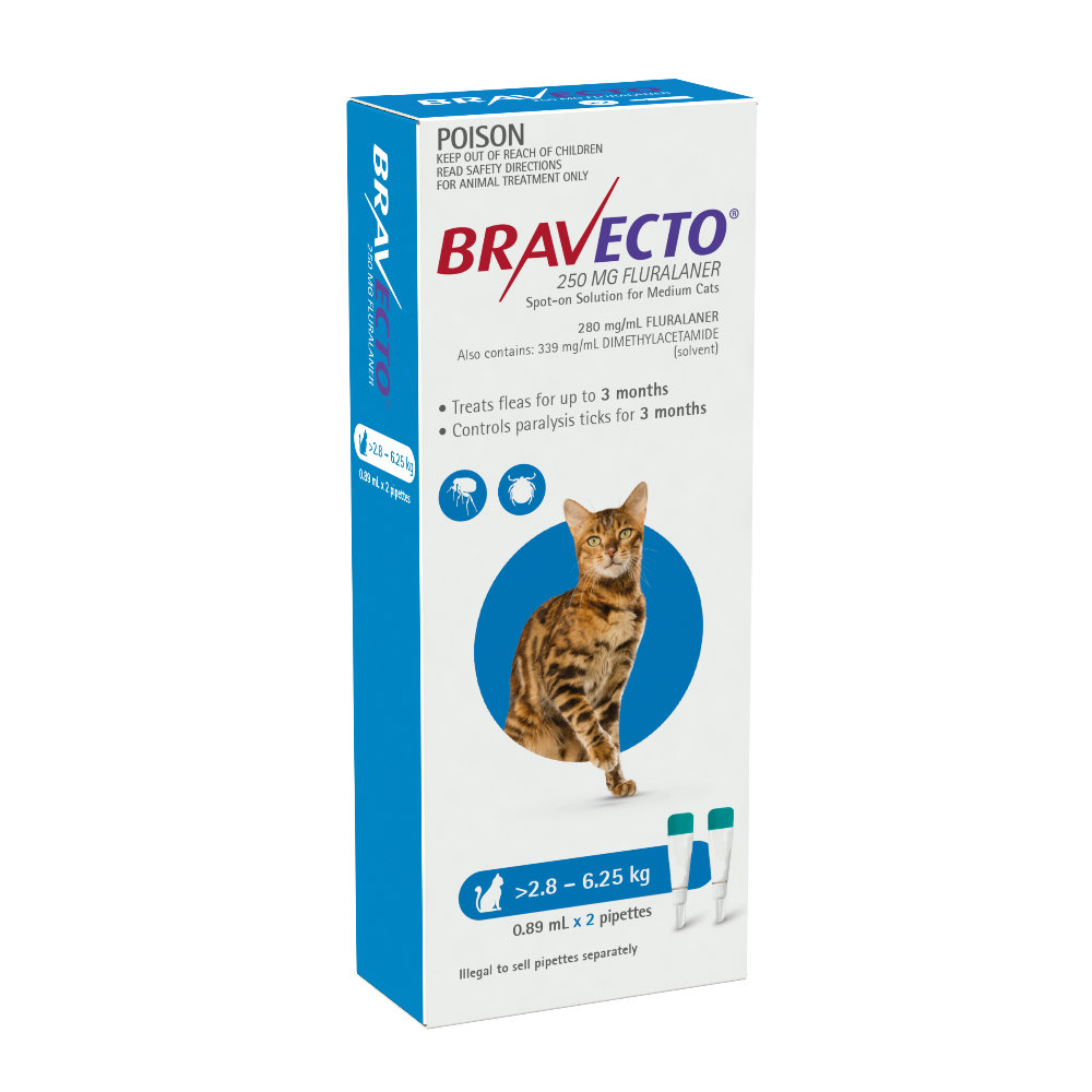 Bravecto Cat Medium 2.8-6.25kg Blue Spot On Treatment