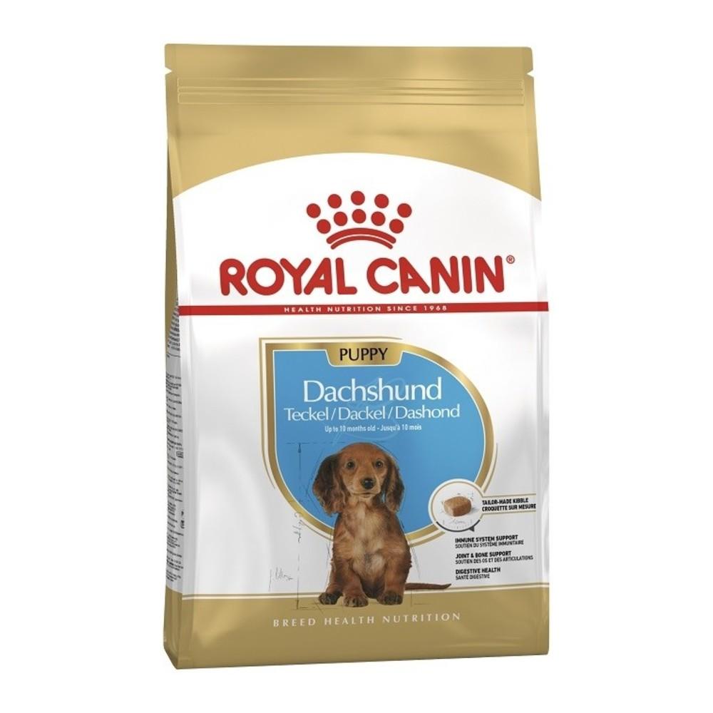 Royal Canin Dachshund Puppy