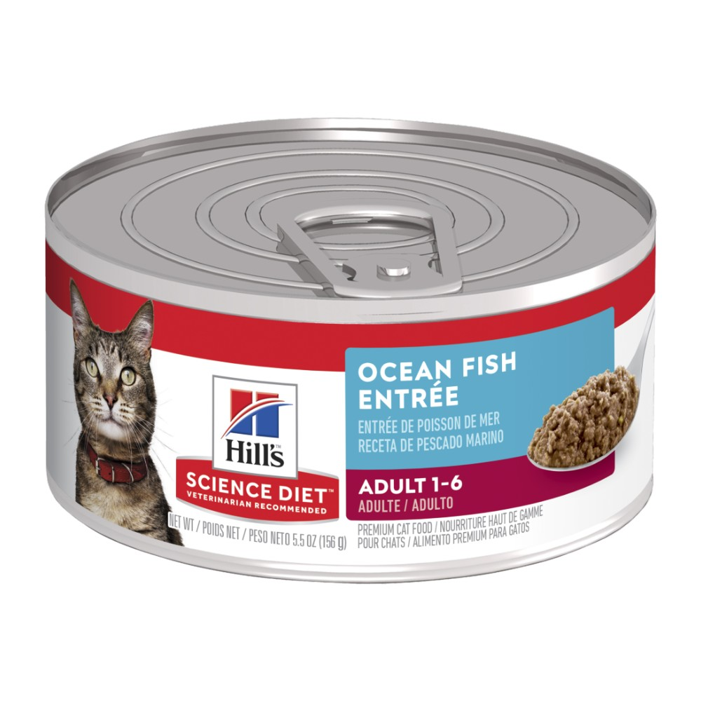 Hills Science Diet Adult Cat Ocean Fish Entree Canned Food