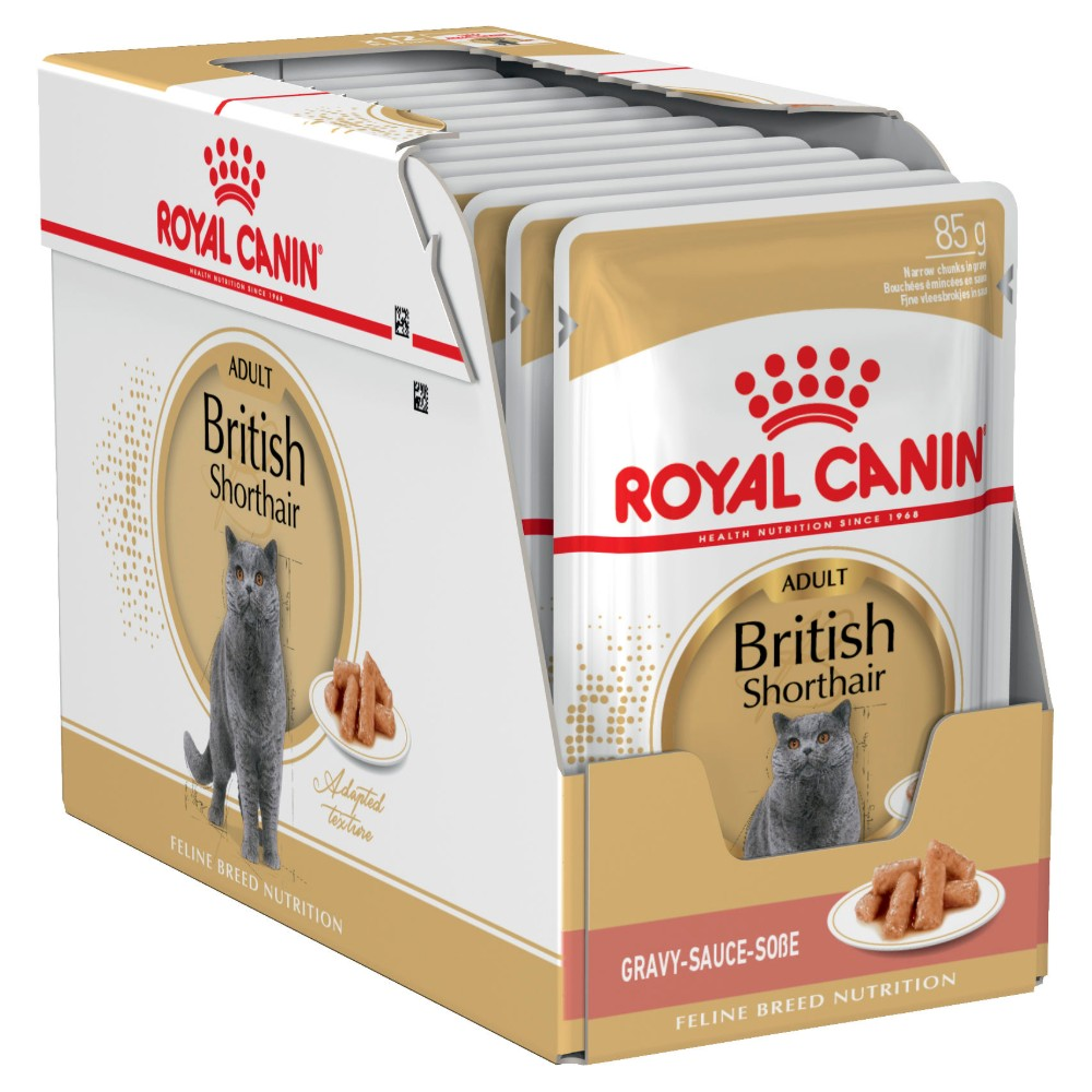 Royal Canin Adult British Shorthair in Gravy