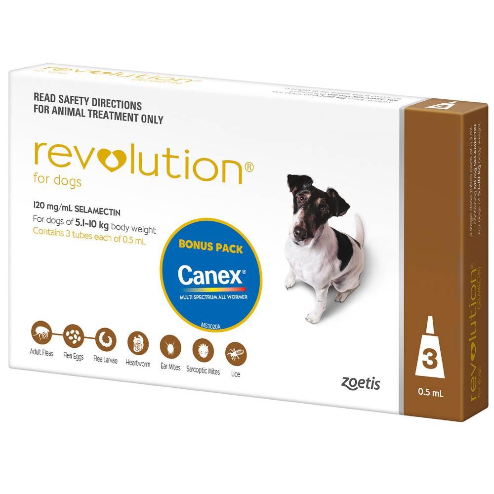 Revolution Brown Small 5.1-10kg