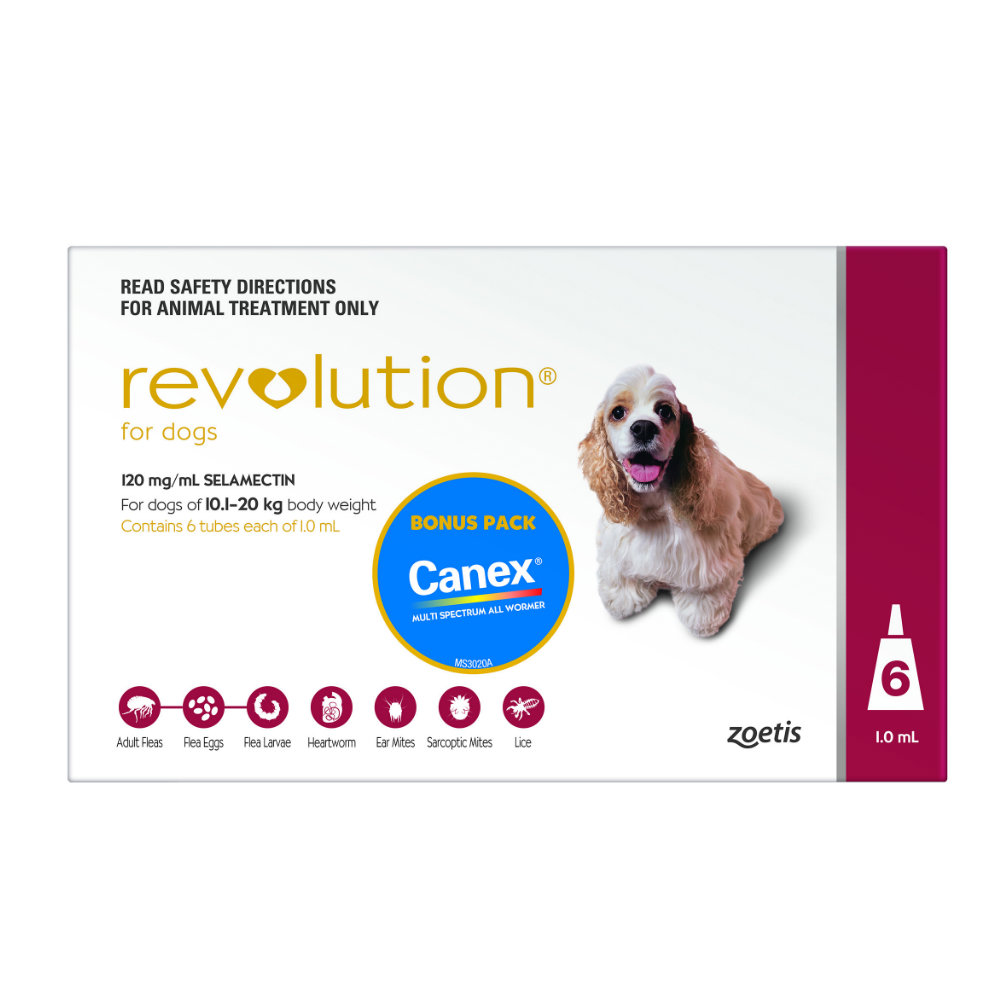 Revolution Red Medium 10-20kg