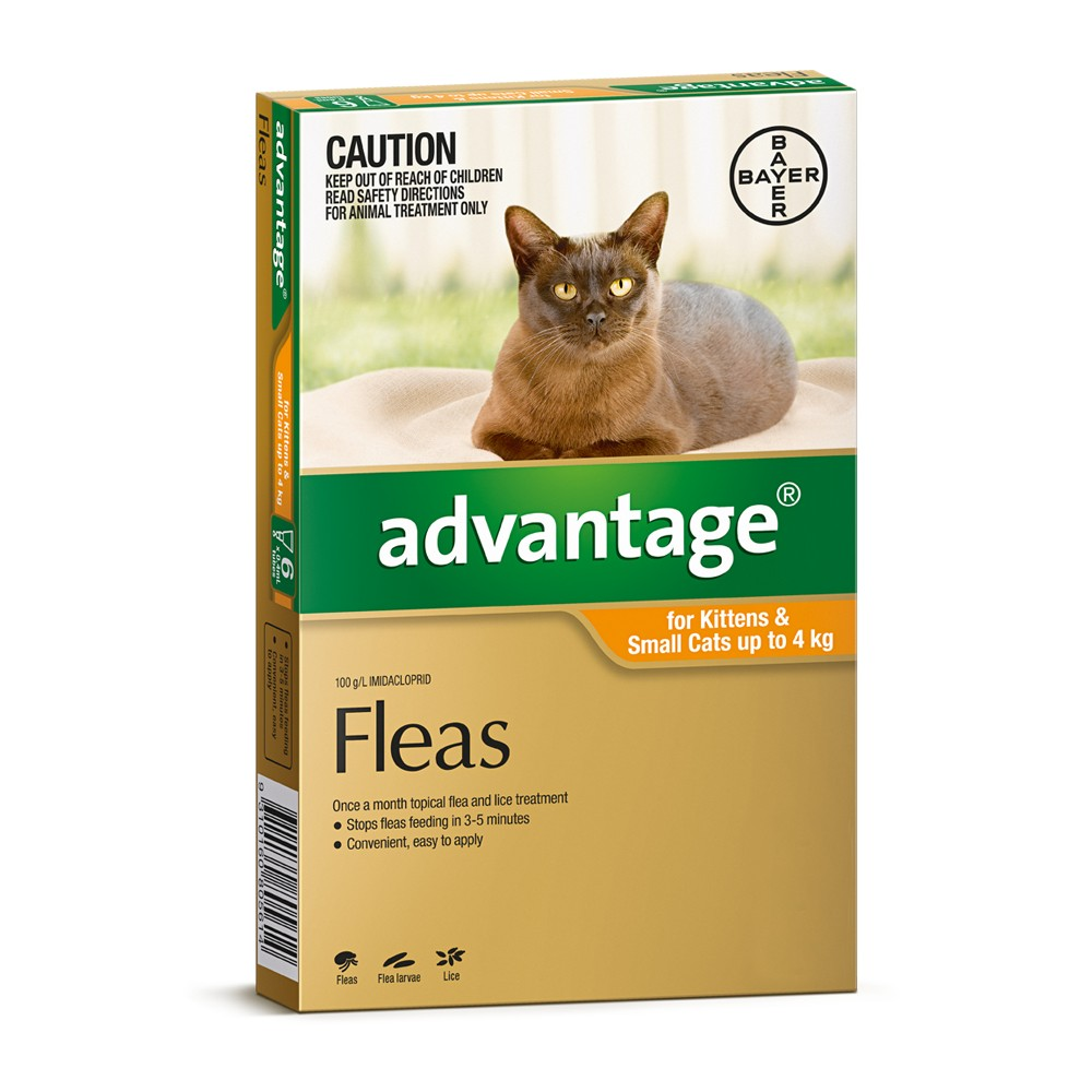 Advantage Kitten and Small Under 4kg Orange