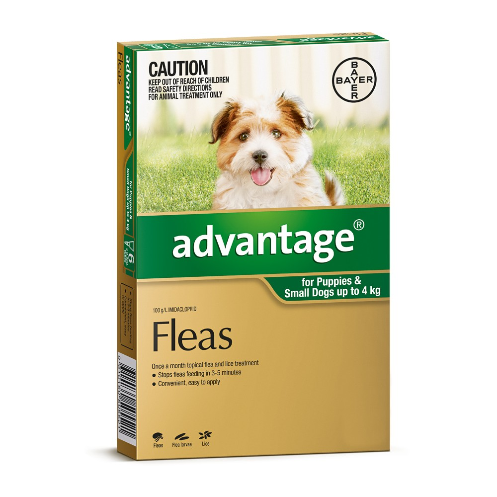 Advantage Small Dogs and Puppies Under 4kg Green