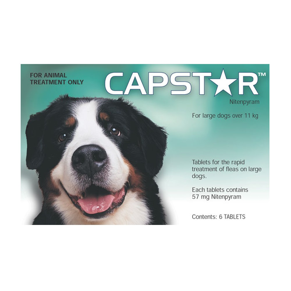 Capstar Large Dogs Over 11kg