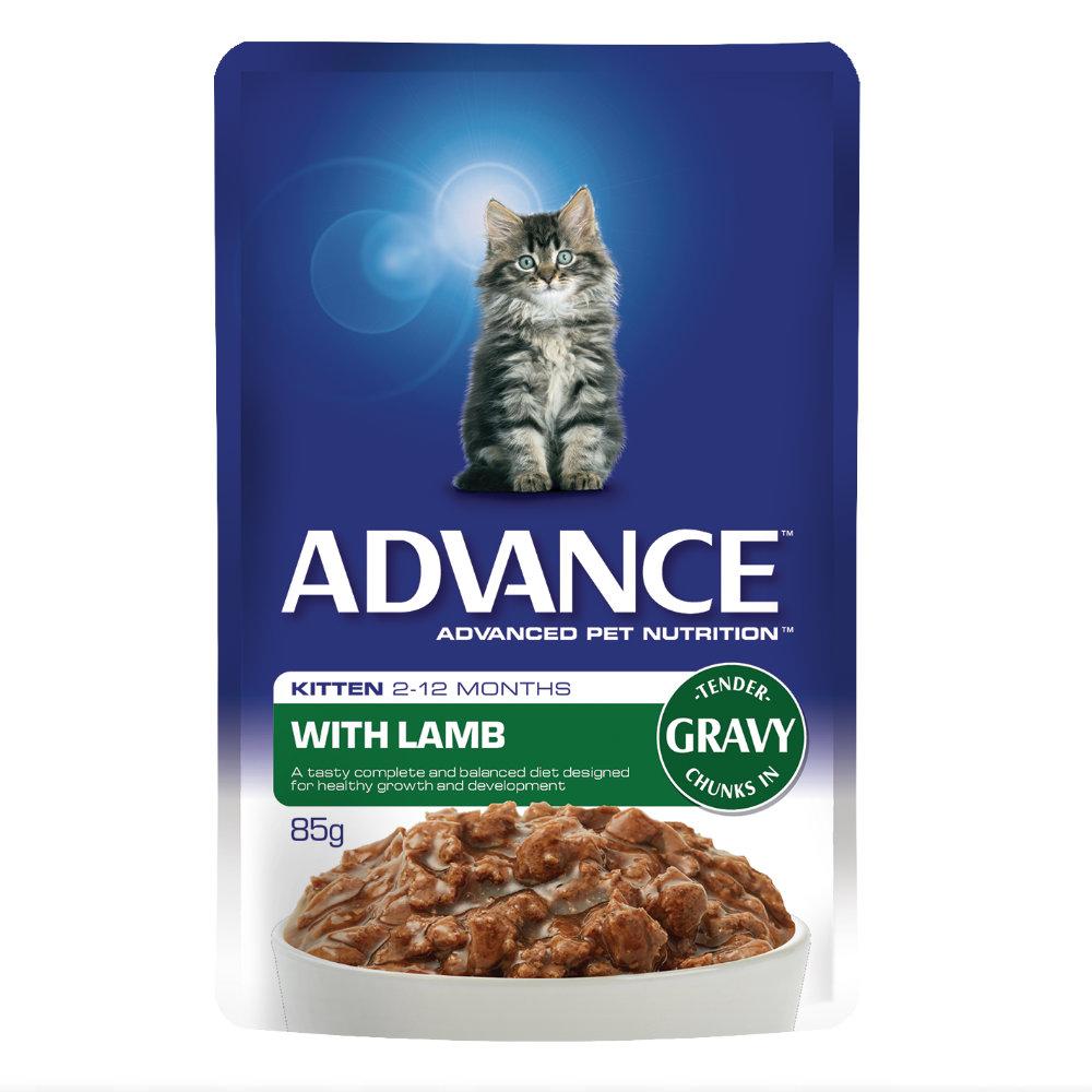 Advance Kitten Lamb in Gravy