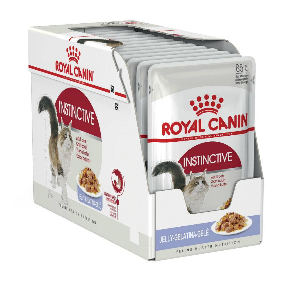 royal canin adult instinctive in jelly cat food. Black Bedroom Furniture Sets. Home Design Ideas